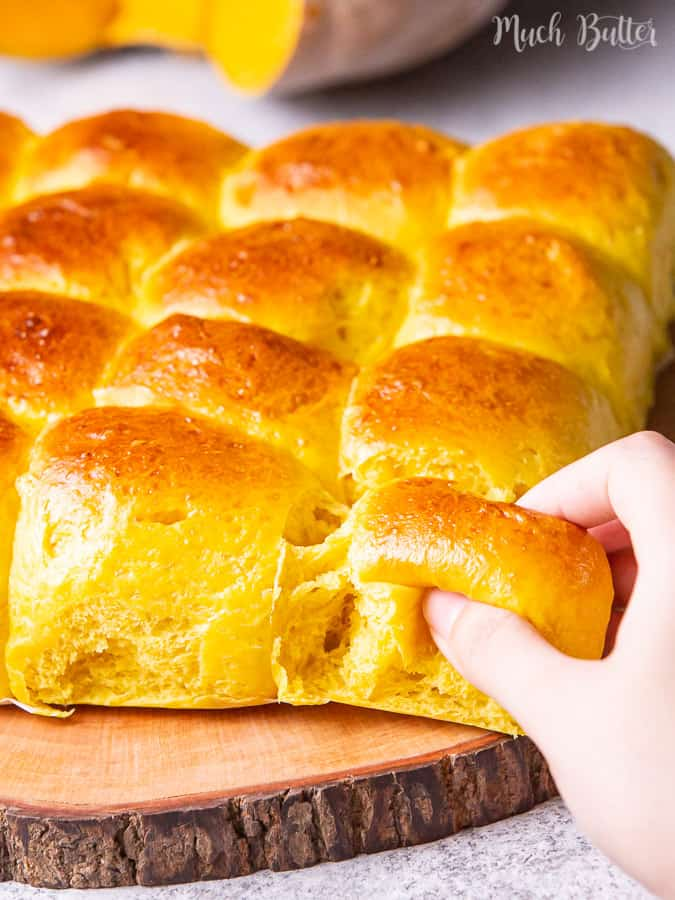 Pumpkin dinner rolls bread time for fall! Pumpkin bread is the best choice for Halloween dan Thanksgiving. Orange and sweet vibes in this fall season will color our Halloween and Thanksgiving days. Get ready for tricks or 'treats'!